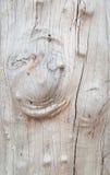 Occhio di legno con il fondo di legno naturale del modello Fotografie Stock