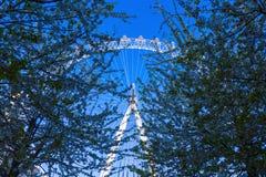 Occhio di Londra con gli alberi della priorità alta Fotografia Stock