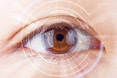 Occhio di marrone del primo piano la protezione futura della cataratta, ricerca, contac fotografie stock