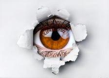 Occhio di marrone della donna che guarda attraverso il foro in carta strappata immagine stock