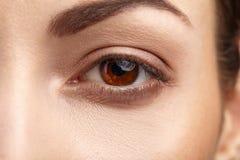 Occhio di marrone della donna con i cigli lunghi Fotografie Stock Libere da Diritti
