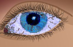 Occhio di sfaccettatura Fotografia Stock