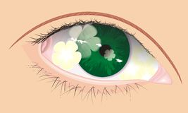 Occhio di vettore con l'ombra del fiore all'interno Immagini Stock Libere da Diritti