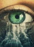 Occhio e cascata Fotografia Stock Libera da Diritti
