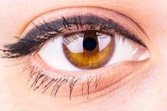 Occhio femminile Fotografie Stock Libere da Diritti