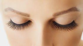 Occhio femminile con i cigli falsi lunghi estremi Estensioni del ciglio, trucco, cosmetici, bellezza e cura di pelle fotografia stock