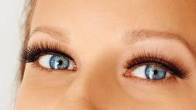 Occhio femminile con le sferze lunghe estreme dell'occhio falso Estensioni del ciglio, trucco, cosmetici, bellezza fotografia stock