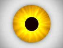 Occhio giallo Fotografia Stock
