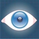 Occhio-Osservi Fotografia Stock