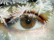 Occhio per vetro dal fiocco di neve Immagine Stock Libera da Diritti