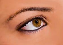 Occhio stupefacente Fotografia Stock