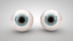 Occhio su un fondo bianco Fotografia Stock