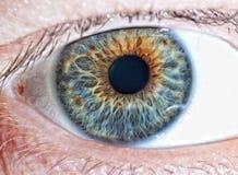 Occhio umano Fotografie Stock