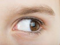 Occhio umano che guarda alla destra Fotografie Stock