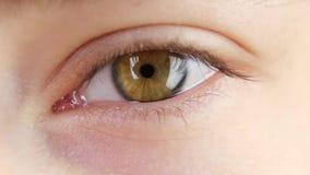 Occhio umano che guarda, alto vicino, movimento lento video d archivio