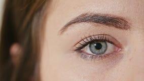 Occhio umano con la riduzione della pupilla immagine stock libera da diritti