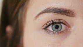 Occhio umano con la riduzione della pupilla immagine stock