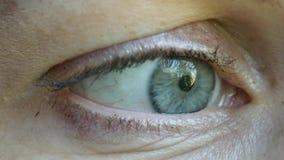 Occhio umano di lampeggiamento, primo piano estremo, macro 4K UHD archivi video