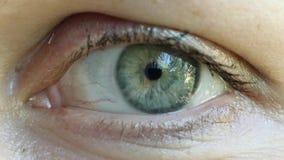 Occhio umano di lampeggiamento, primo piano estremo, macro 4K UHD video d archivio