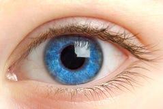 Occhio umano. fucilazione a macroistruzione?. Fotografia Stock Libera da Diritti