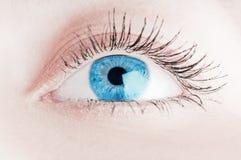 Occhio umano. fucilazione a macroistruzione immagini stock