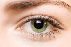 Occhio verde immagini stock libere da diritti