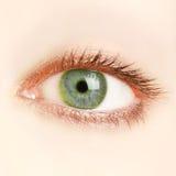 Occhio verde Immagini Stock