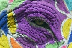 Occhio verniciato dell'elefante Fotografia Stock Libera da Diritti