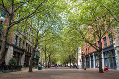Occidental Avenue in Seattle, WA Stock Photography