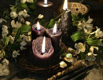 Black candles and white flowers on witch table. Occult, esoteric and divination still life. Halloween background with vintage objects and magic ritual royalty free stock photos