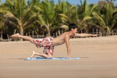 Occupations by yoga on a beach Royalty Free Stock Photography