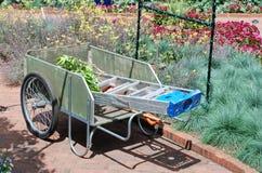 Occupato nel giardino Fotografia Stock