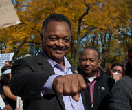 Occupy Chicago - Jesse Jackson Royalty Free Stock Image