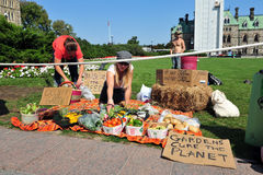 Occupy protesters set up garden display Stock Photos