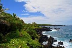 Oceaan de Sleepstijging van kustlijnmaui stock foto