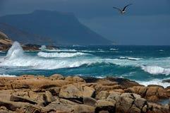 Oceaan, Kaapstad Royalty-vrije Stock Foto's