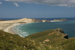 Oceaan klippen in Nieuw Zeeland Stock Afbeeldingen