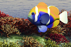 Oceaan Ondiepte vector illustratie