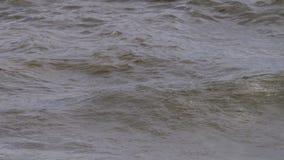 Oceaan overzeese golven stock footage