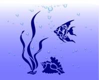 Oceaan schat, Stock Foto's