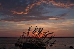 Oceaan Sunset Stock Foto