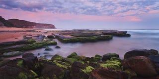 Oceaan Vastgestelde Pan Narrabeen Stock Afbeeldingen