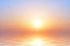 Oceaan zonsopgang en vogels Stock Fotografie