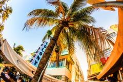 Oceaanaandrijving in Miami met Restaurants voor beroemd Art Deco Style Colony Hotel Royalty-vrije Stock Afbeelding