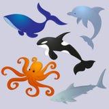 oceaandiereninzameling royalty-vrije illustratie