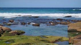 Oceaangolven, Bondi-Strand, Sydney, Australië stock footage