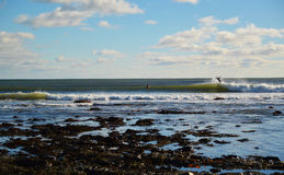 Oceaangolven die op een zonnige dag met surfers breken die kelp tenietdoen Stock Foto's