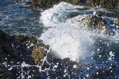Oceaangolven die op kust verpletteren Royalty-vrije Stock Fotografie