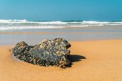 Oceaangolven die op Strandkust verpletteren royalty-vrije stock foto