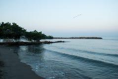 Oceaangolven op de kust bij zonsopgang Stock Afbeeldingen